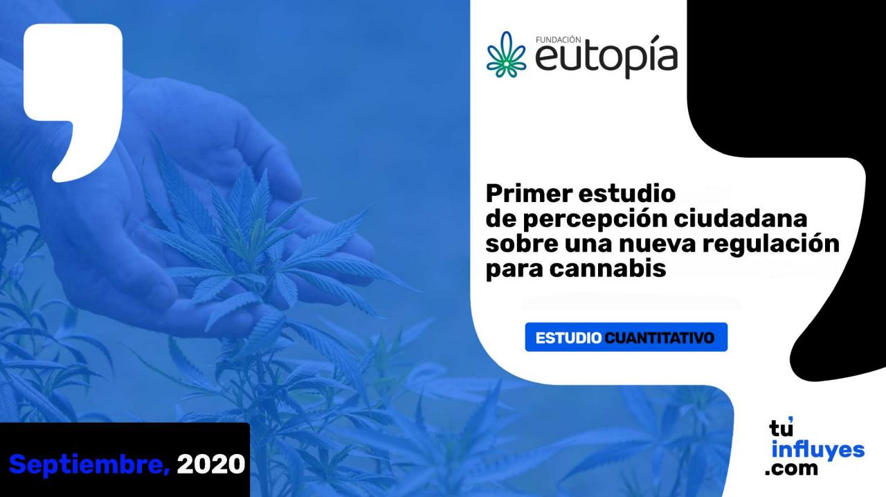 Primer estudio de percepción ciudadana sobre una nueva regulación para cannabis | Fundación Eutopía